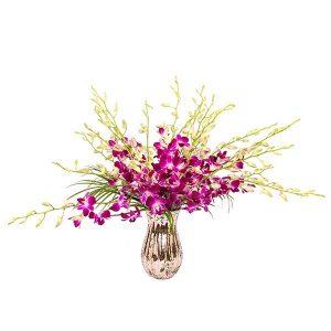 orchid-splash-in-fushia