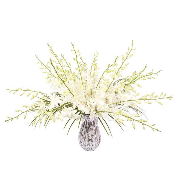 orchid-splash-in-white