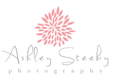 Asley Steeby Logo